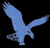 eaglehawke